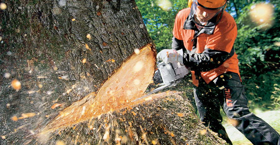How to Choose a Chain Saw